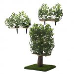 Tree Shaped Indoor Cat House