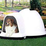 Indigo With Micro-ban Dog House
