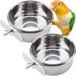 Bird Feeding Cups