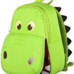 Dinosaur Backpack For Kids