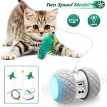 Robotic Cat Toys