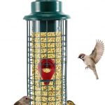 Bird Feeder Pole With Squirrel Baffle