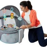 Fisher Price On The Go Baby Dome
