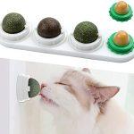 Catnip Wall Ball Toys