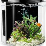 Fish Tank For Farming